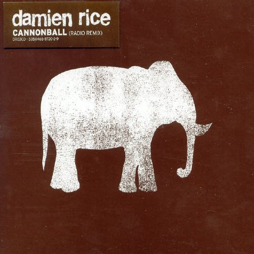 Damien Rice - Cannonball, Pt. 1 - Zortam Music