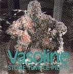 Stone Temple Pilots - Vasoline - Zortam Music