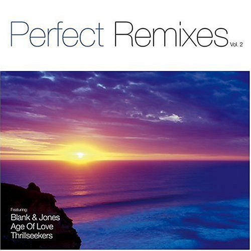 Paul Van Dyk - Perfect Remixes - Zortam Music