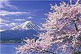 1000ピース 桜色の季節-富士山 10-547S