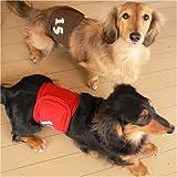 15アップリケマナーベルト(全犬種対応、サイズ:M、カラー:12/ベージュ)