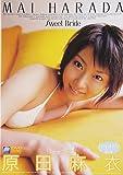 原田麻衣 SWEET BRIDE 画像