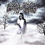 album art to Bleed the Grey Sky Black
