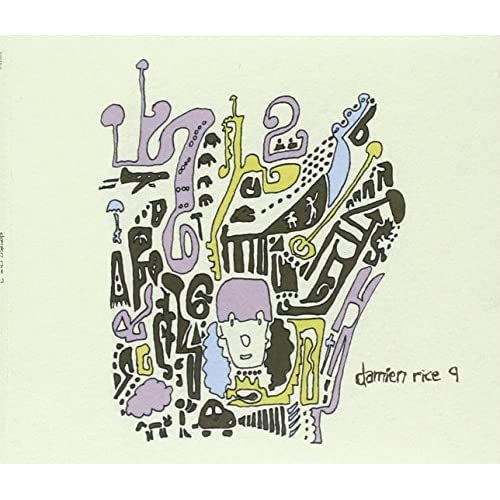 9 - Damien Rice
