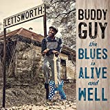 The Blues Is Alive & Well [12 inch Analog]